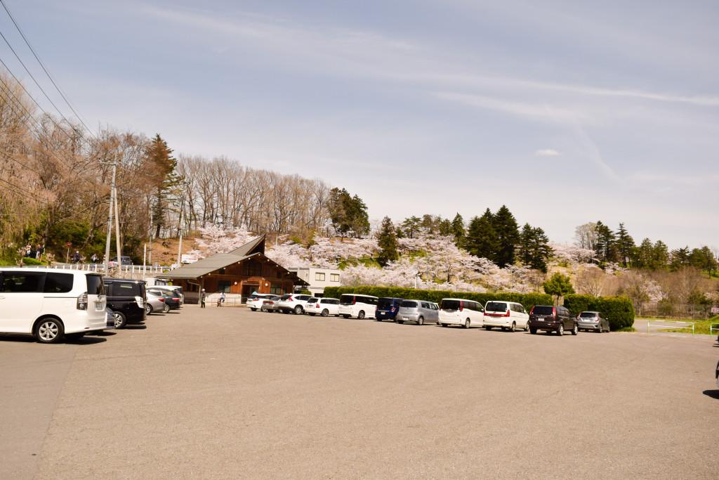 芝桜駐車場
